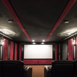 Construction Company from North Shore Chicago Area -  Integrity Construction Consulting, Inc. - Movie Theater Room