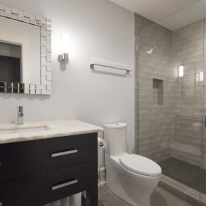 Construction Company from North Shore Chicago Area -  Integrity Construction Consulting, Inc. - Shower & Bathroom Coountertop