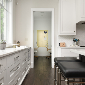 Construction and Remodeling Company from North Shore Chicago Area -  - Integrity Construction Consulting, Inc.  - Kitchen Area