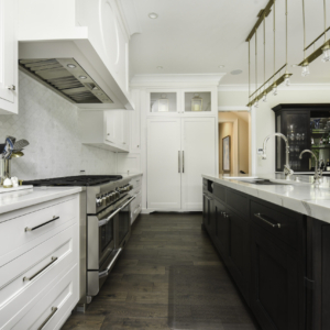 Construction and Remodeling Company from North Shore Chicago Area -  - Integrity Construction Consulting, Inc. - Kitchen Island & Countertop